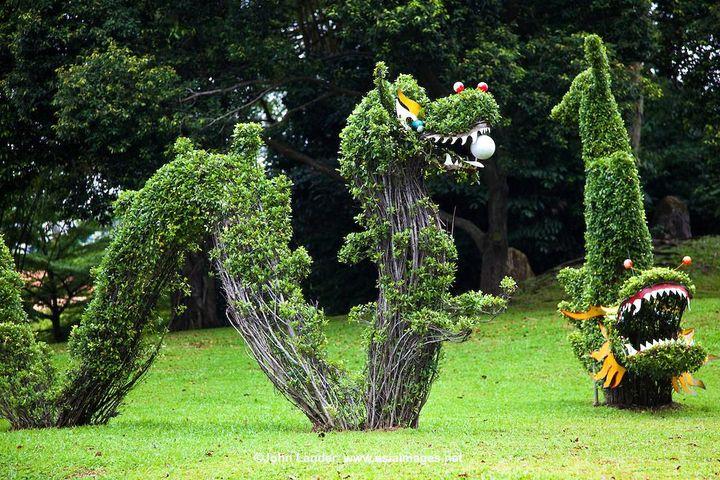 singapore chinese garden 🐍
