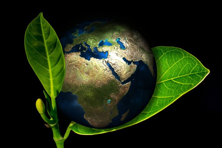 🌱 Save Earth, Save Life 🌱 HAPPY EARTH DAY ALL Of YOU