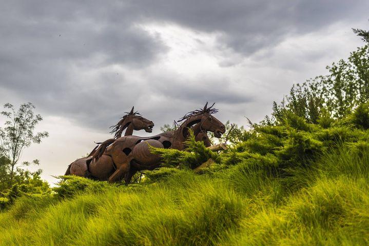 Horses Garden #sculpture