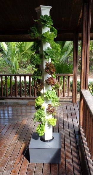 Replenishing Tower - grow your own herbs & vegetables at home  #home #gardening #garden #homegarden