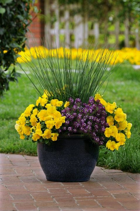 Make your front porch cool with awesome #flower container..