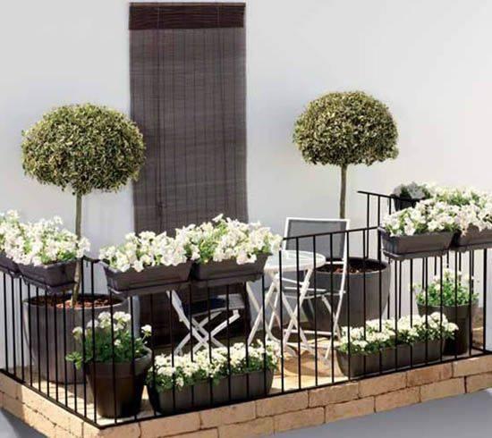Small space #balconygarden  So cool <3