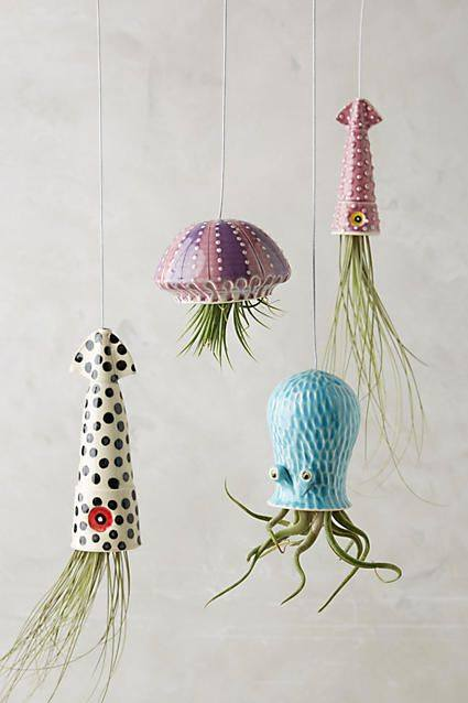 Sea Creature Hanging Planter !! #IndoorGardening