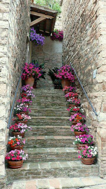 Staircase decorated with flower pots. Nice idea <3