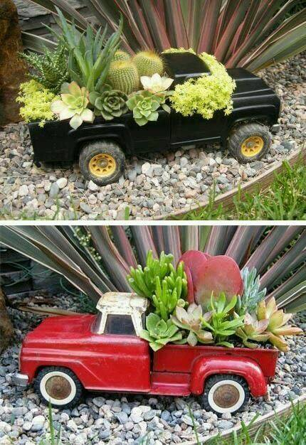 Succulent plant in old toy trucks..