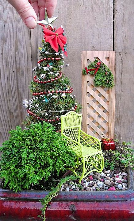 Such a cute mini #garden for this #christmas  #Christmas2016
