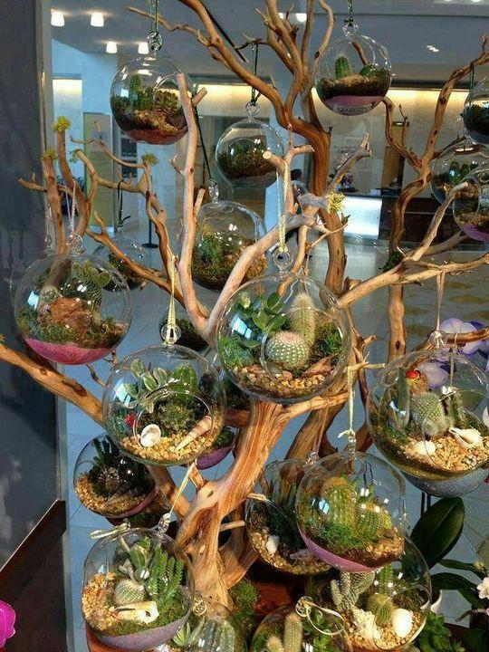 Fabulous #Succulent Planting Idea