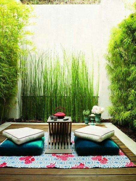 Small backyard  #garden #gardening