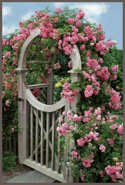 Rosy garden gate! Awesome <3