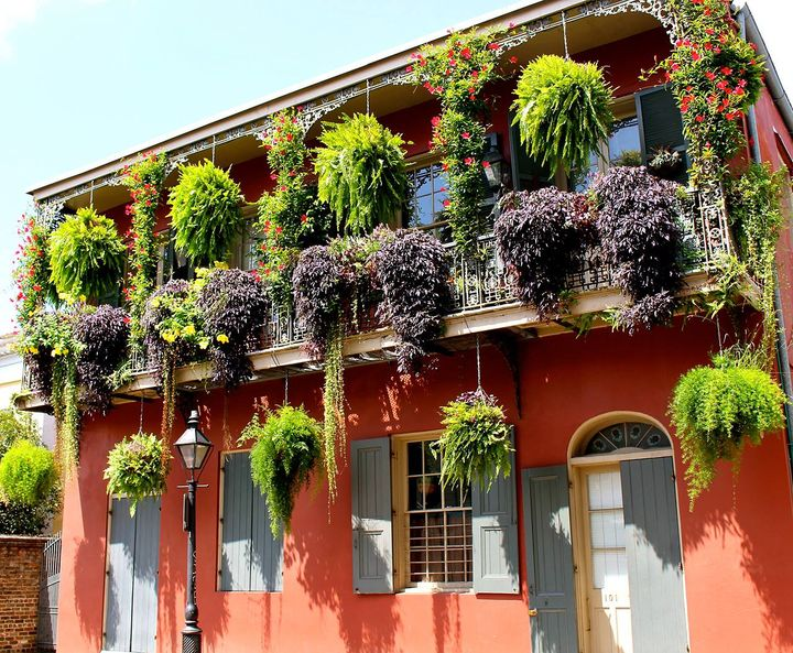 Small balcony looking awesome with #hangingplant  #gardening #garden #balconygarden