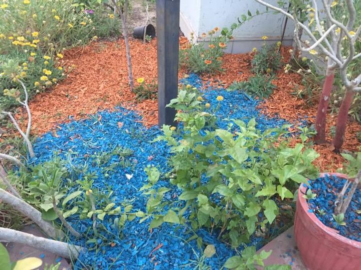 Create appealing flower beds and garden areas with Sharpex Deko Chips. Get it Today from   http://www.amazon.in/dp/B06XJGFJSG
