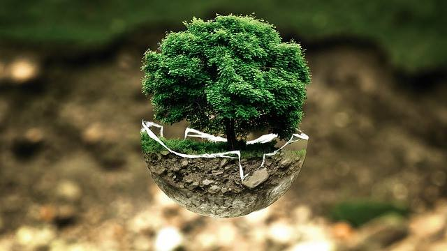 Let's plant a tree today and make the life of earth much longer. #HappyEarthDay