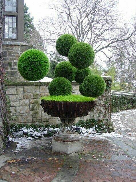 Remarkable grass #sculpture. #gardening #garden