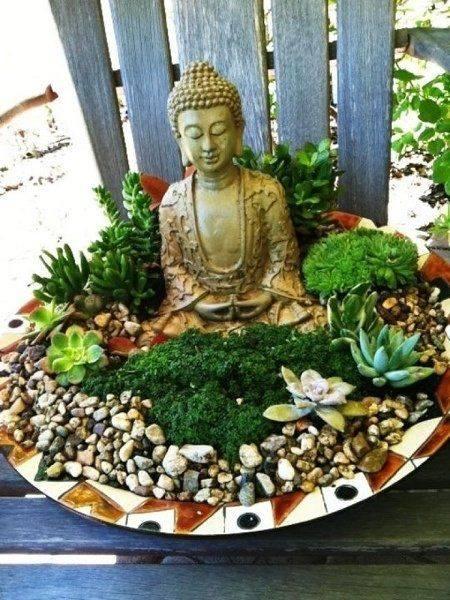 peaceful succulent !! So beautiful..