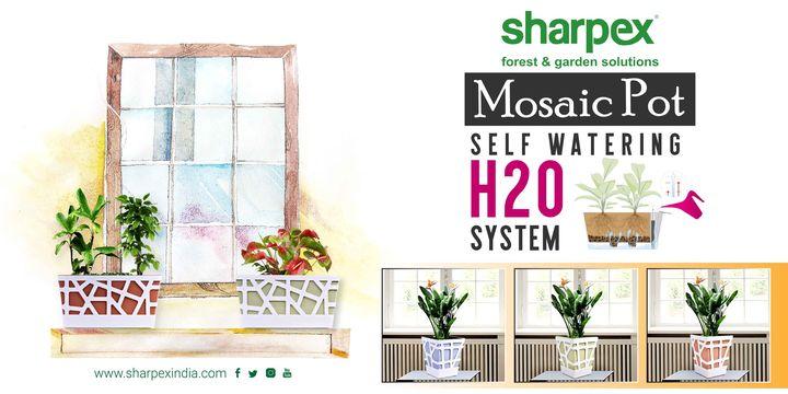 Mosaic Pot self watering H2O system  https://sharpexindia.com/  #gardening #sharpexindia #sharpex #gardeningproducts #Lawncare #Simplygardenspares #Selfpropelledlawnmower #gardenstorage #Growwithgarden #Lawnmowerrepairs #H2O #water
