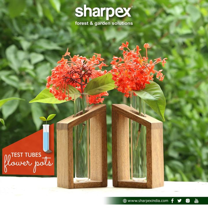Test tubes flower pots  https://sharpexindia.com/  #gardening #sharpexindia #sharpex #gardeningproducts #Lawncare #Simplygardenspares #Selfpropelledlawnmower #gardenstorage #Growwithgarden #flower #flowerpot #garden  Ahmedabad, India Gandhinagar, Gujarat Surat Gujrat India  Udaipur, Rajasthan