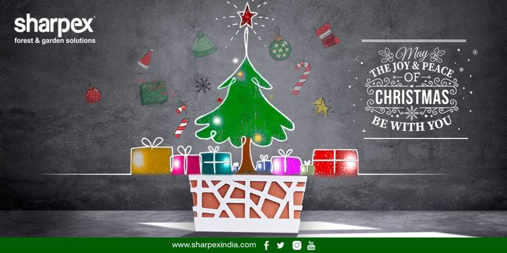 On Christmas let's fill everyone's life with love and light!  https://sharpexindia.com/  #gardening #sharpexindia #sharpex #gardeningproducts #Lawncare #Simplygardenspares #Selfpropelledlawnmower #gardenstorage #Growwithgarden #flower #flowerpot #garden #Secateur #plants #gardenproduct #happy #metalplantstand #ministand #flowerpotstand #Christmas #ChristmasDay