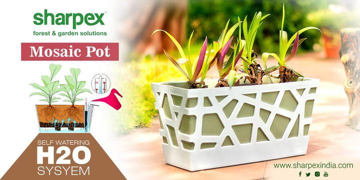 Sharpex Engineering,  gardening, gardeningproducts, flower, gardenproduct, gardenpot, happy, plantershelfstand, flowerpots, European