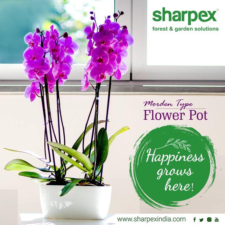 Sharpex Engineering,  gardening, gardeningproducts, flower, gardenproduct, gardenpot, happy, plantershelfstand, flowerpots, plant, garden
