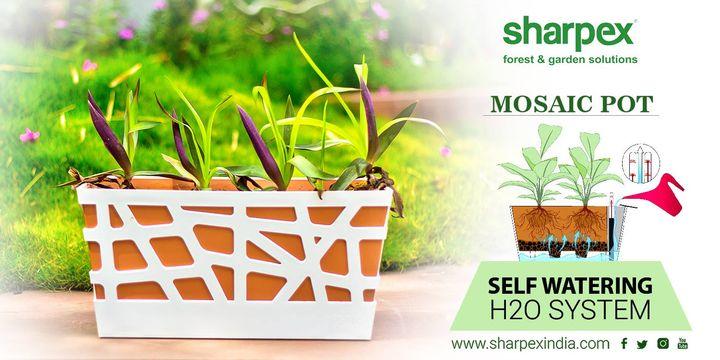 Self watering H2O system  https://sharpexindia.com/gardening/  #gardening #gardeningproducts #gardenproduct #gardenpot #happy #plantershelfstand #flowerpots #plant #garden #mosaicpot  Ahmedabad, India Gandhinagar, Gujarat Vadodara, Gujarat, India
