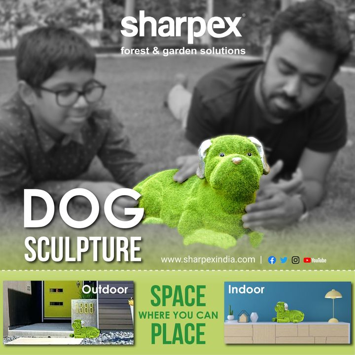 Always choose the best!  Buy Dog Sculpture  Order Now: https://www.amazon.in/Sharpex-Feel-Grass-Shape-Sculpture/dp/B07PWXQWLJ/ref=sr_1_136?m=A2J71Z31F2ZIA3&qid=1559036262&s=merchant-items&sr=1-136  https://sharpexindia.com Forest & Garden Solutions  Call Us for any query: 18003133303  #gardeningproducts #gardenproduct #gardenpot #plantershelfstand #flowerpots #plant #flower #dogsculpture #outdoordogsculpture  Ahmedabad, India Gandhinagar, Gujarat Mumbai, Maharashtra Surat, Gujarat Vadodara, Gujarat, India