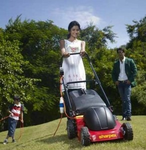 Do you know that a commercial lawnmower uses more gas in a year than a car?? Read on to know more.