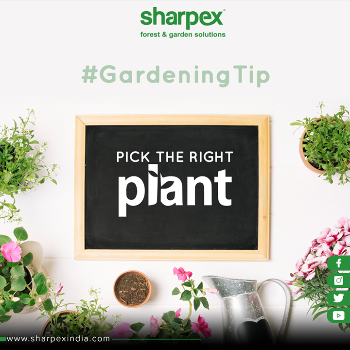 Sharpex Engineering,  GardeningTips, GardeningTools, ModernGardeningTools, GardeningProducts, GardenProduct, Sharpex, SharpexIndia