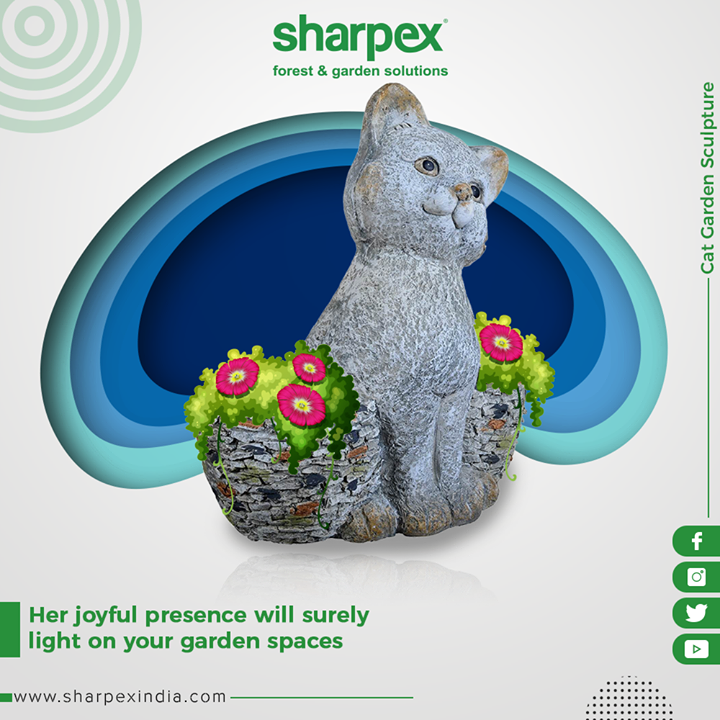 Enrich your garden spaces with our cute, tiny, and sharp cat garden sculpture!  #GardenSculpture #GardeningTools #ModernGardeningTools #GardeningProducts #GardenProduct #Sharpex #SharpexIndia
