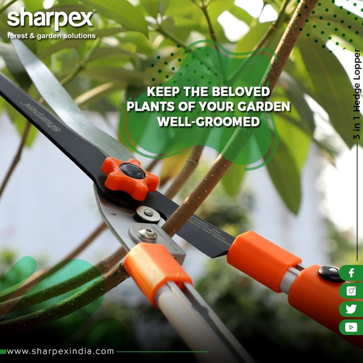 Are you that garden enthusiast who loves to maintain a well-manicured garden around?  If you are one, then we have got your garden equipment covered. The all-rounder 3-in-one hedge lopper will help in enhancing your gardening art with ease. The hedge sheer helps in cutting and shaping hedges, thesecateurs helps in cutting the branch twigs and the lopper assist in cutting the branches.  #GardeningTools #ModernGardeningTools #GardeningProducts #GardenProduct #Sharpex #SharpexIndia