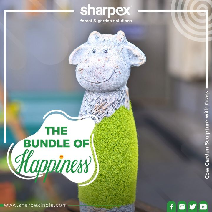 Address love & happiness!   Grace your spaces with this bundle of joy from Sharpex!  #HappyGardening #GardeningTools #ModernGardeningTools #GardeningProducts #GardenProduct #Sharpex #SharpexIndian