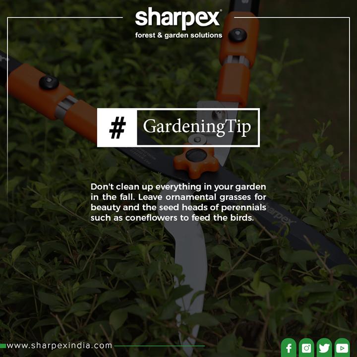 Sharpex Engineering,  GardeningTips, GardeningTools, ModernGardeningTools, GardeningProducts, GardenProduct, Sharpex, SharpexIndia