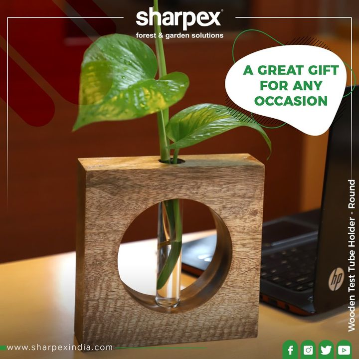 Ditch the #MondayBlues by staying amidst the peace of greens!  #GardeningProducts #GardenProduct #Sharpex #SharpexIndia #GardeningTools #ModernGardeningTools