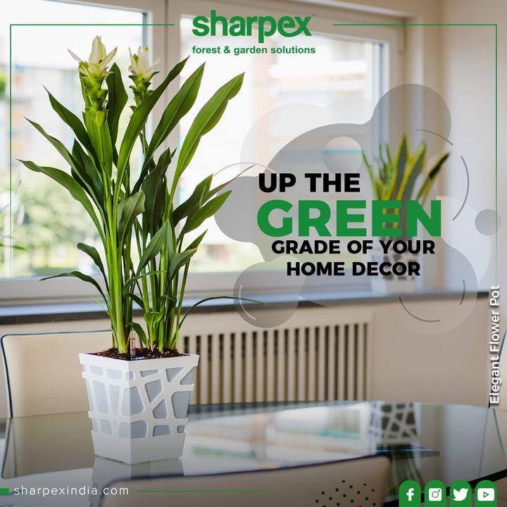 Sharpex Engineering,  ElegantFlowerPot, FlowerPot, FlowerPower, LoveForFlowers, Gardenspaces, Greengarden, Gardening, GardenLovers, Passionforgardening, Garden, GorgeousGreens, GardeningTools, ModernGardeningTools, GardeningProducts, GardenProduct, Sharpex, SharpexIndia