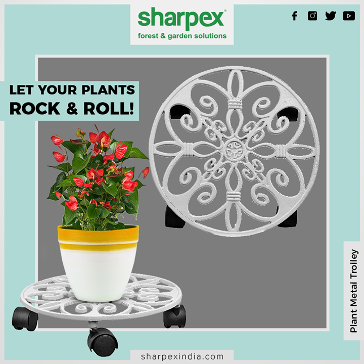 The plant stands with elegant design and minimalist style, wrought iron lines, thickened, providing strong support for plants, brightens up your home and garden. Let your flower bloom with this beautiful and practical planter stand on the time!   #MetalTrolley #PlantTrolley #Gardenspaces #Greengarden #Gardening #GardenLovers #Passionforgardening #Garden #GorgeousGreens #GardeningTools #ModernGardeningTools #GardeningProducts #GardenProduct #Sharpex #SharpexIndia