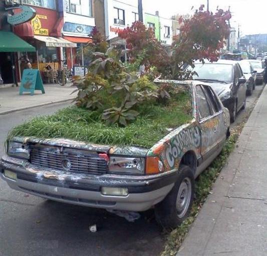 Garden Car !!!
