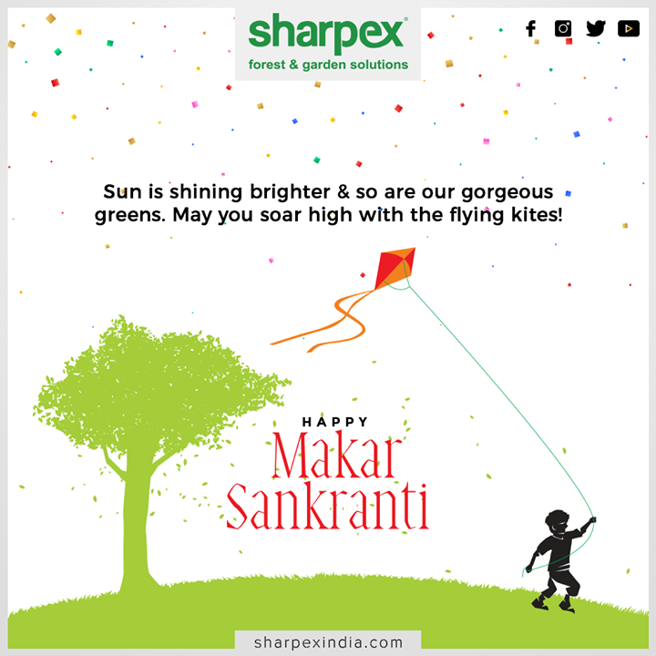 Sun is shining brighter & so are our gorgeous greens. May you soar high with the flying kites!  #MakarSankranti2020 #MakarSankranti #Kites #KitesFestival #Uttarayan #Uttarayan2020 #KiteFlying #CelebrationTim #GardeningTools #ModernGardeningTools #GardeningProducts #GardenProduct #Sharpex #SharpexIndia