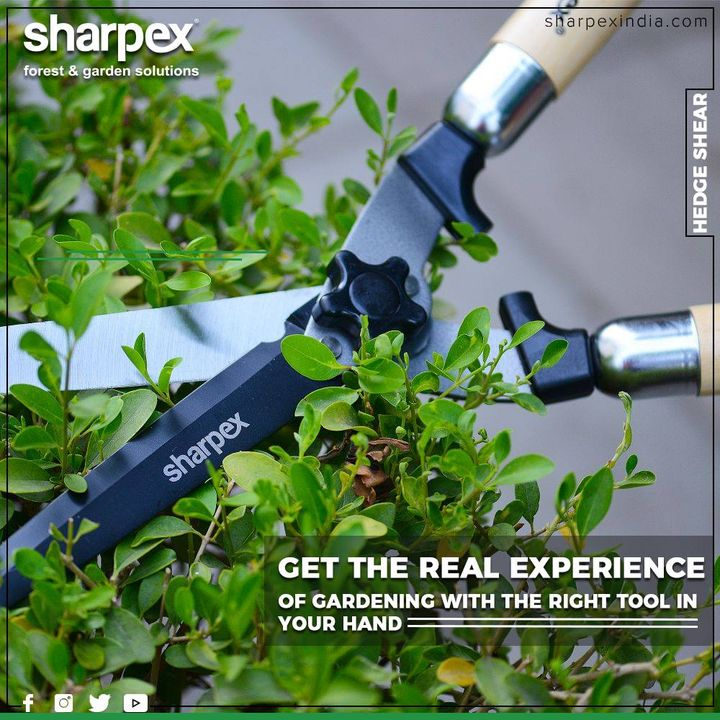 These specially designed tools are perfect to maintain a healthy and attractive garden.  #Gardenspaces #Greengarden #Gardening #GardenLovers #Passionforgardening #Garden #GorgeousGreens #GardeningTools #ModernGardeningTools #GardeningProducts #GardenProduct #Sharpex #SharpexIndia