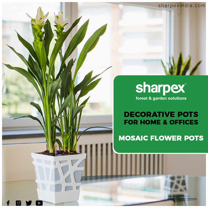 Give your home, deck, or balcony the perfect combination of classic style and natural beauty with this charming planter stand  #GardeningTools #ModernGardeningTools #GardeningProducts #GardenProduct #Sharpex #SharpexIndia