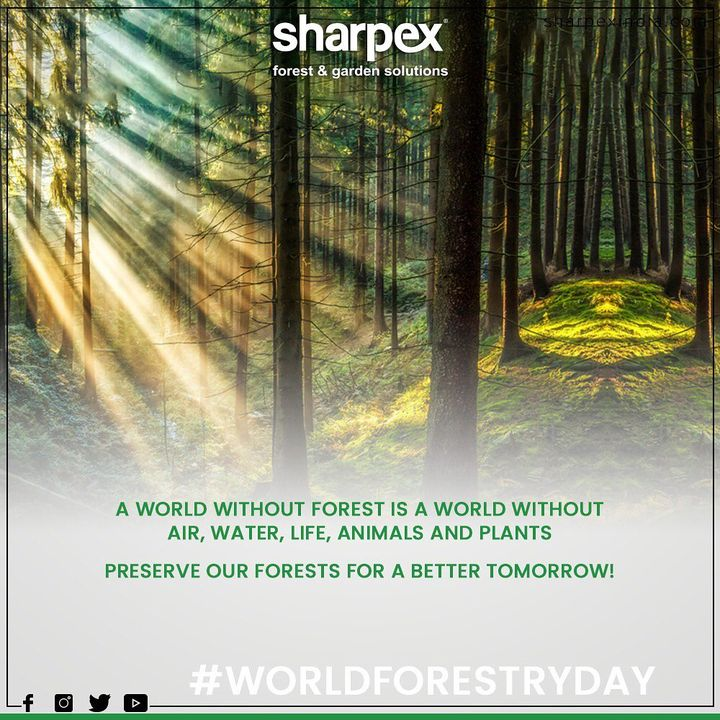 World Forest Day 🌲 #Worldwaterday #Waterday #Awareness #Worldwaterday2020 #GardeningTools #ModernGardeningTools #GardeningProducts #GardenProduct #Sharpex #SharpexIndia