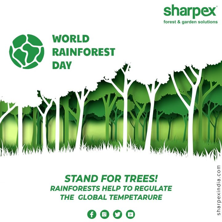 Stand for trees!Rainforests help to regulate the global temperature.  #WorldRainForestDay #GardeningTools #ModernGardeningTools #GardeningProducts #GardenProduct #Sharpex #sharpexindia