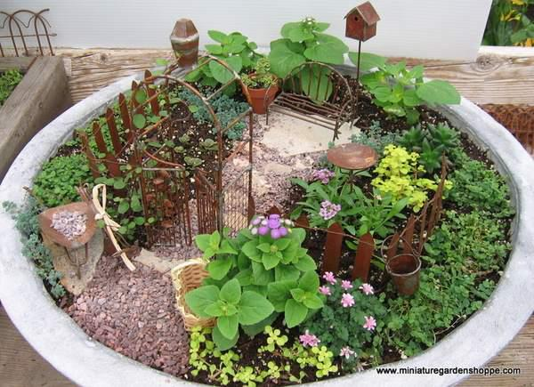 How about a garden in a container??