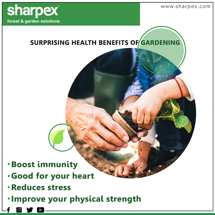 The surprising health benefits of gardening.  #SurprisingHealthBenefits #HealthBenefitsofGardening #GardeningBenefits #Sharpex #GardeningTools #ModernGardeningTools #GardeningProducts #GardenProduct #SharpexIndia