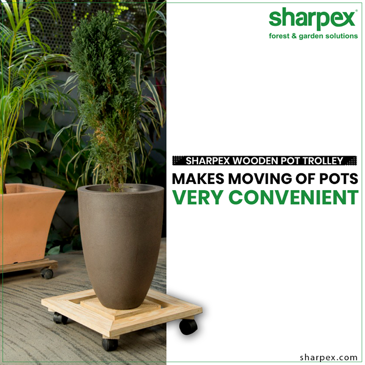 #SharpexWoodenPotTrolley allows you to easily and safely re-position pot plants in your backyard or balcony without any heavy lifting  #WoodenPotTrolley #PotTrolley  #GardeningTools #ModernGardeningTools #GardeningProducts #GardenProduct #Sharpex #SharpexIndia