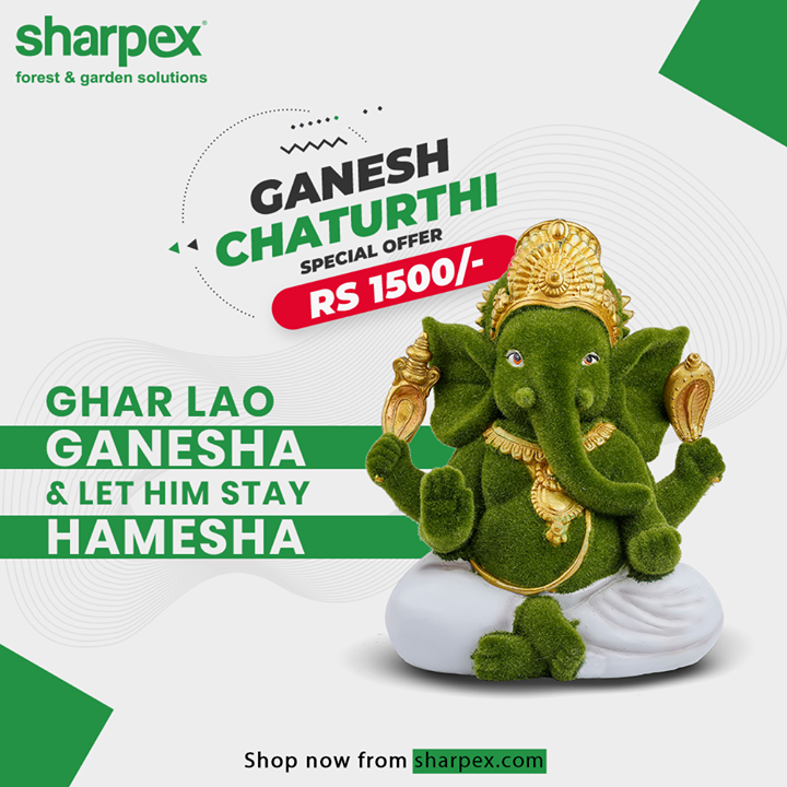 This Ganesh Chaturthi, Ghar Lao Ganesha & Let him Stay Hamesha.  Bring home the beautiful #GreenGanesha from Sharpex and let prosperity stay at your home forever!  Don't miss out special Ganesh Chaturthi Offer on eco-friendly #GaneshaIdol for flat Rs. 1500/-  Buy now from: https://sharpex.com/green-ganesha-garden-sculpture.html  #GaneshChaturthiOffer #GaneshChaturthi #ModernGardeningTools #GardeningProducts #GardenProduct #Sharpex #SharpexIndia