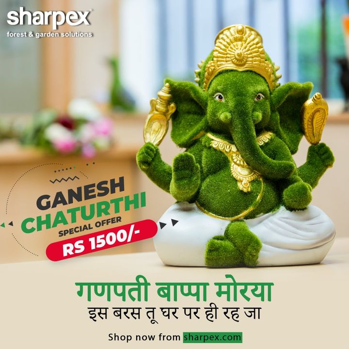 This Ganesh Chaturthi, bring home Ganpati Bappa and let him stay with you forever! Sharpex Gardening Community has a sustainable Ganesha Idol which is too good to let go.  There's a special Ganesh Chaturthi Offer on this beautiful, eco-friendly Ganesha Idol for Rs. 1500/-  Buy now from the following link: https://sharpex.com/green-ganesha-garden-sculpture.html  #GaneshChaturthiOffer #GaneshChaturthi #ModernGardeningTools #GardeningProducts #GardenProduct #Sharpex #SharpexIndia