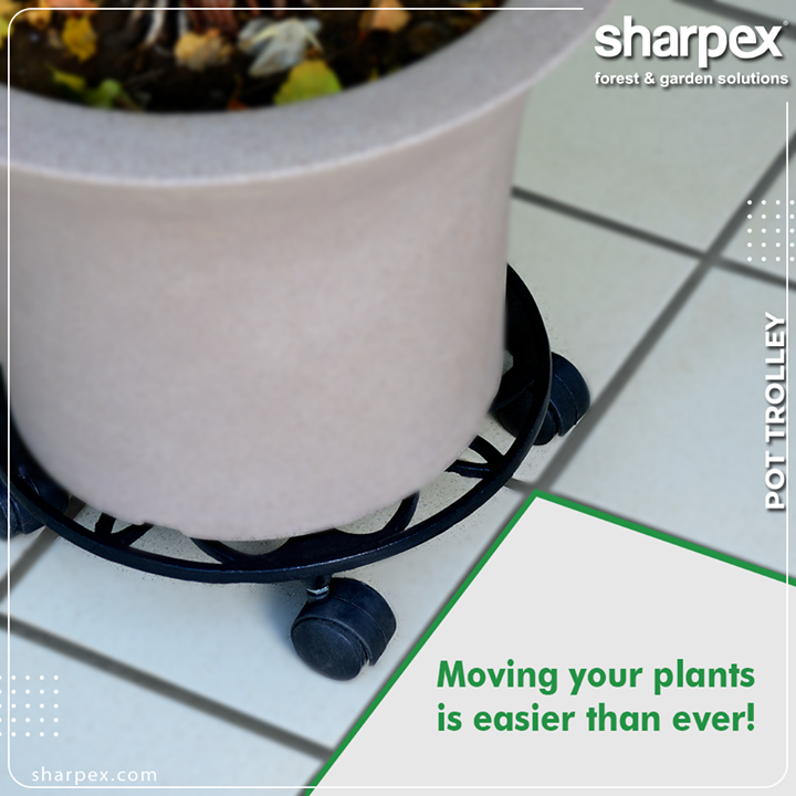 Moving your plants is easier than ever with our #Plantpottrolleys.  #GardeningTools #ModernGardeningTools #GardeningProducts #GardenProduct #Sharpex #SharpexIndia