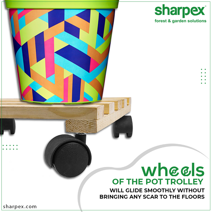 Now you can move the heavy plants easily without straining your back or damaging the floors and the carpets.   All you need to do is buy the easily movable pot trolleys from Sharpex Gardening Community. The wheels of the pot trolley will glide smoothly without bringing any scars to the floors.  #GardeningTools #ModernGardeningTools #GardeningProducts #GardenProduct #Sharpex #SharpexIndia