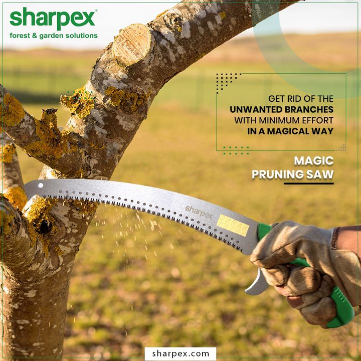 If you are looking for an ideal tool that will help you to get rid of the unwanted braches of trees with minimum effort in a magical way then consider your search over with Sharpex's #MagicPruningSaw.  #GardeningTools #ModernGardeningTools #GardeningProducts #GardenProduct #Sharpex #SharpexIndia