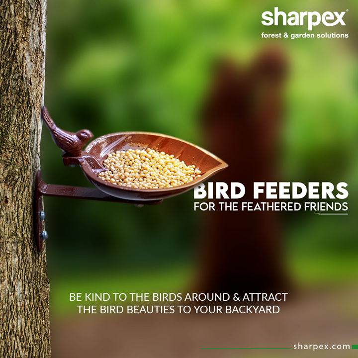 Sharpex Engineering,  Sturdy, BirdFeeder, BirdLovers, ModernGardeningTools, GardeningProducts, GardenProduct, Sharpex, SharpexIndia