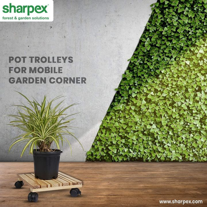 Are you a gardener or a wise gardener?  The gardeners will only make gardening their forte but the wise ones will make their garden corner mobile & portable too!  #PotTrolley #ModernGardeningTools #GardeningProducts #GardenProduct #Sharpex #SharpexIndia